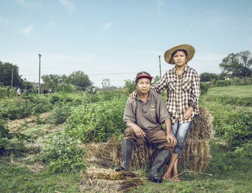 In Kansas City, Kansas, Two Myanmar Natives Have Found Their Own Version of the American Dream Through Farming