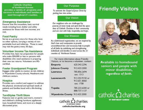 Brochure: Friendly Visitors