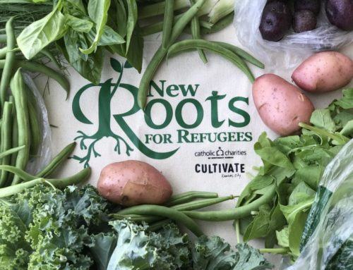 Farm Share with New Roots for Refugees